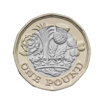 Image of £1 coin